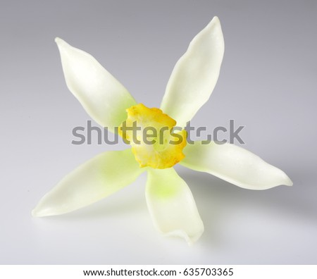 SINGLE VANILLA FLOWER