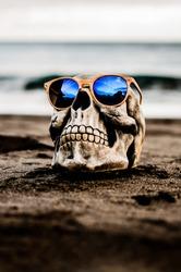 skull on the beach summer