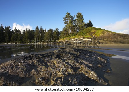 Small stony island at Pacific coast of Canada