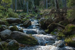 small waterfalls on a stream in the Bohemian Forest