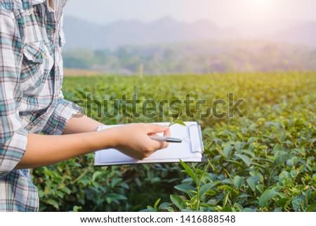 Smart farmer checking report of agriculture in tea plantation #1416888548