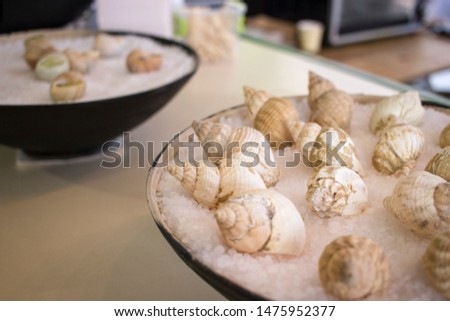 Snails street food. Delicatessen food