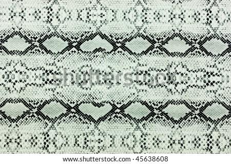 snake skin leather background