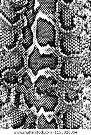 Snake skin pattern texture repeating seamless monochrome black and white. . Texture snake. Fashionable print. Fashion and stylish background