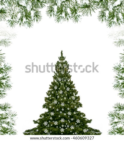 Snow covered trees. fir branch isolated on white background.  Christmas tree #460609327