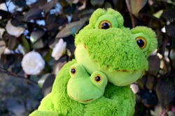 soft toy frog mother with baby in the garden