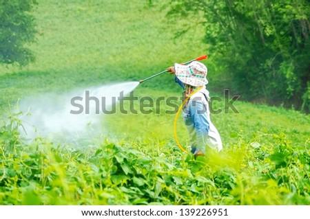Spraying pesticides on field,