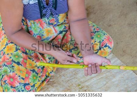 Sri Lanka. Production of cinnamon. #1051335632