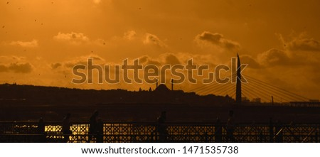 İstanbul Silhouette Famous Places History Backgorund Mosque  #1471535738