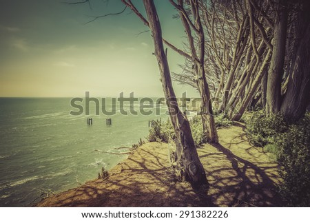 Steep Californian cliffs with trees - vintage view