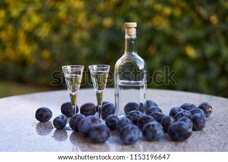 Still life Picture of the bottle of homemade slivovitz or plum brandy with two glases of short drink and fresh riped plums on the stone table in garden restaurant.