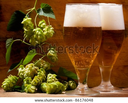 still life with glasses of beer and hops