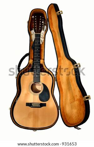 12 string Guitar case