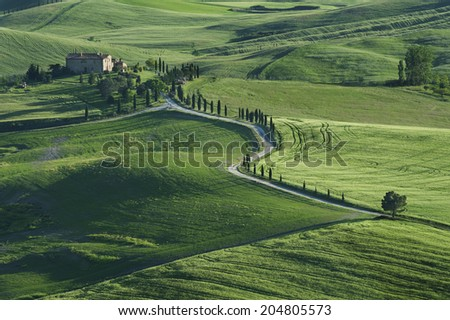 Stunning Landscape in Tuscany Italy