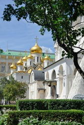Stunning onion-shaped domes (cupolas) of old Annunciation Cathedral with a southern wall of Archangel Cathedral (at the right) framed by trees in the summer season. MOSCOW KREMLIN, RUSSIA