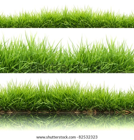 3 style fresh spring green grass isolated on white background - stock photo
