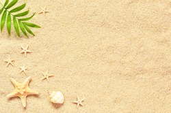Summer beach. Sea sand with starfish and shells. Top view with copy space. Summer background.