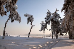Sunset Dawn. Winter nature sunset tree silhouette. Winter sunset tree snow patterns. Dense fog over the river in winter. Sunrise in the thick winter fog. landscape Trees with snow in a park.