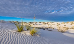 Sunset in White Sands National Park