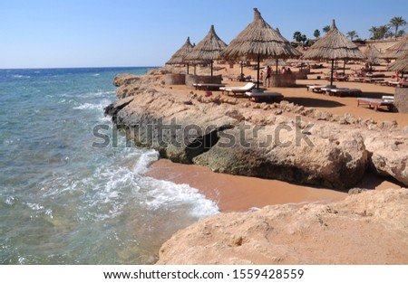 Sunshade umbrellas on the beach with parsols straw sunshades and wooden sunbeds on the beach of Red Sea coast. #1559428559