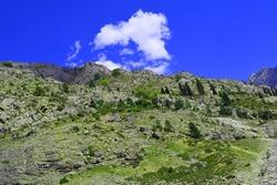Swat Mountains near Kalam: Selective focus, selective focus on subject, background blur
