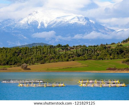 Taurus Mountains front fish farm