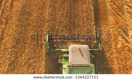 15.07.2018 - Tetiiv, Ukraine. Combine moves on field. Top view of agricultural machine. Rich crop of wheat. Bread for the nation. #1364227151
