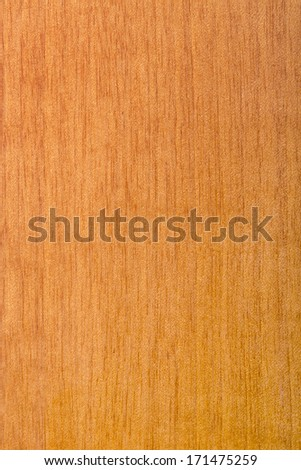 texture of natural wood, laminated wood varnished maple