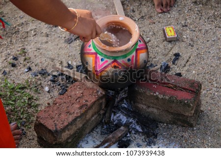 Thai Pongal is a harvest festival dedicated to the Sun God. It is a four-day festival which according to the Tamil calendar is usually celebrated from January 14 to January 17 #1073939438