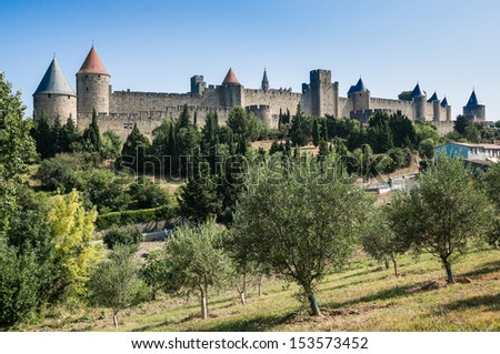 the ancient city of Carcassonne oa olive tree field with on the background, south of France