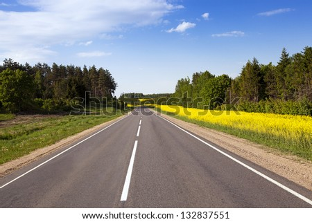 the asphalted highway in summertime of year. along the road trees grow. nearby there are agricultural fields about a colza