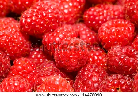 the berries of ripe red raspberry combined together. small depth of sharpness