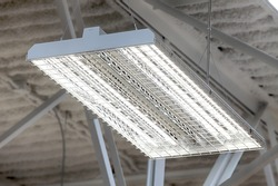 The energy efficient, high intensity fluorescent lighting in a new modern public building.