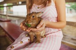 The girl holds a rabbit in her arms. Friendship of animals and people. Cute bunny on the farm