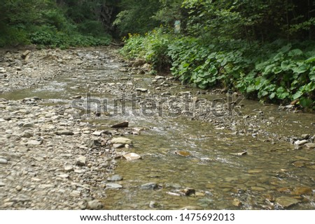 The mountain river. Shallow mountain river
