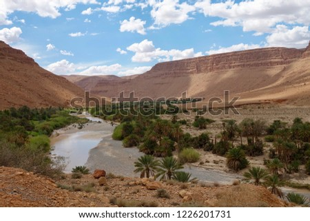 Photo of       The oasis with date fruit palms is in the Draa river valley, Morocco.