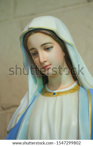 The Statue of Blessed Virgin Mary