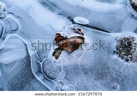 The surface of the ice surface #1567297876