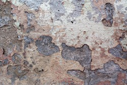 The wall is covered with many layers of paint and rust, the background looks like unpainted concrete. devastation.