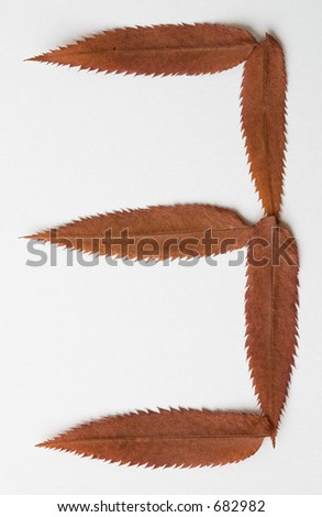 3 three one number: alphabet and numbers with autumn brown red dry leaf on white background
