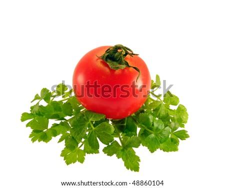 stock-photo--tomato-and-parsley-on-isolated-white-background-48860104.jpg