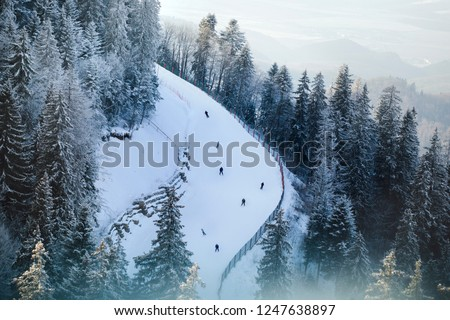 Top view of the skier, which descends  skiing down from the slope. Aerial shot drone.   People racing sky snowboards on piste. Friends sport travel extreme leisure on winter christmas holidays.