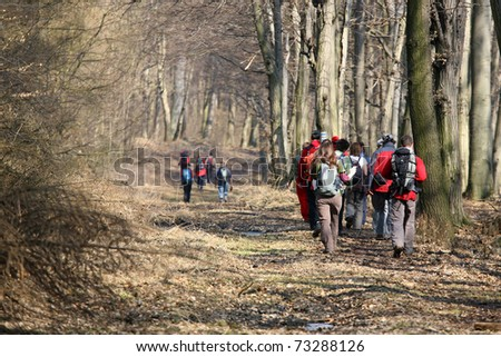 tourists walking on the road at wood. - stock photo