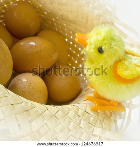Toy chick standing with eggs
