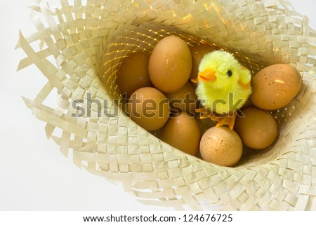 Toy chick with eggs