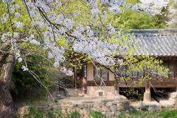 Traditional Korean style architecture in a hanok village Korean tradition.