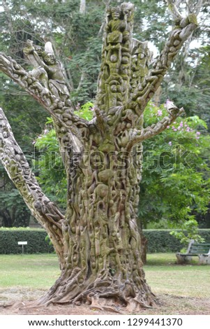 """""""Tree of Life"""". Tree carved with various human depictions, Aburi, Ghana."""