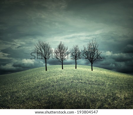 4 trees in an autumnal landscape with bad weather