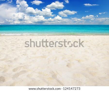 tropical sea #124147273