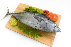 Tuna/little tuna (Thunnus thynnus) decorated with Lemon slice,tomato slice,curry leaves and coriander leaves  on a wooden pad,Whitebackground.